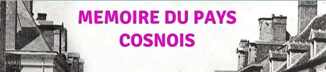 LOGO Pays Cosnois